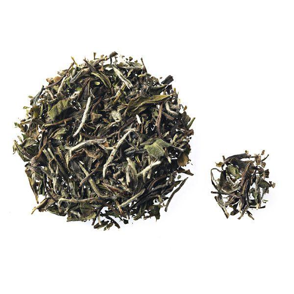 Herbal & Teas Pai Mu Tan