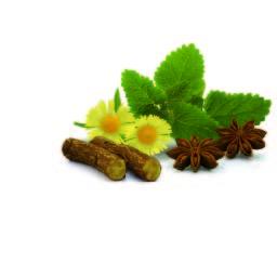 Herbal & Teas Digestiva
