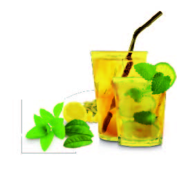 Herbal & Teas Mojito Iced